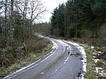 Roadway through Redwells Wood - geograph.org.uk - 1163923.jpg