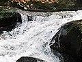 Roaring Fork Falls Black Mountain Campground Pisgah Nat Forest NC 4357 (24096562378).jpg