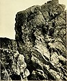 Rock-climbing in the English Lake District (1900) (14797252313).jpg