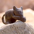 Roman bronze mouse mouse IMG 4523.JPG