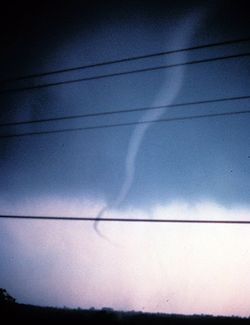 A rope tornado in its dissipating stage.