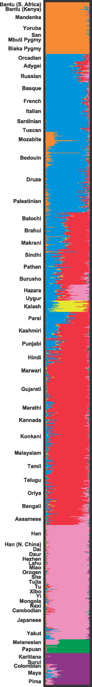 Human genetic variation - Chart showing human genetic clustering.
