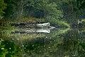Rowboat on Blind Brook.jpg