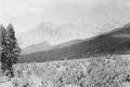 Rundblick auf der Alp Stavelchod vom Piz Tuorn bis zum Piz Nair - CH-BAR - 3239899.tif