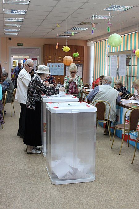 Russian Moscow election 2018 in SVAO 23.jpg