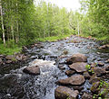 Rutajoki2.jpg
