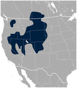 Sage Grouse Centrocercus urophasianus distribution map 2.png