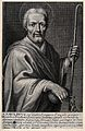 Saint Paulinus of Nola. Line engraving. Wellcome V0032823.jpg