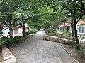Sakaemachi - panoramio (58).jpg