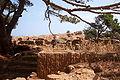 آثار الجزائر تيبازة