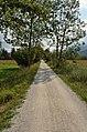 Salzkammergutradweg 02.jpg