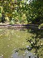 San Ildefonso - El Colmenar, estanque 1.JPG