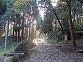 Sankin-kotai Road, Aso 01.jpg
