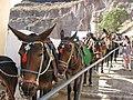 Santorini - panoramio (44).jpg