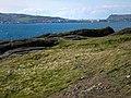 Scarlett Point, looking towards Port St Mary - geograph.org.uk - 772437.jpg