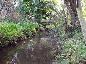 Scarrow Beck - Scarrow Beck on Hanworth Common