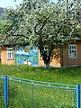 Scenery around Tatariv - Transcarpathia - Ukraine - 10 (27260725101) (2).jpg