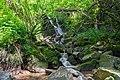 Schopfheim Brandbach Wasserfall.jpg