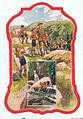 Scouts Vosges, Beuzon.jpg