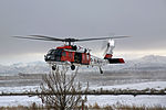 Search and Rescue HM-60S Seahawk at NAS Fallon in February 2016.JPG