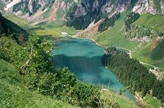 Seealpsee from above.jpg