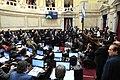 Senado debate Ley de Solidaridad Social y Reactivación Productiva en la Emergencia Económica.jpg
