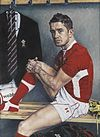 Shane Williams - David Griffiths.jpg