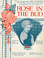 Sheet music cover - ROSE IN THE BUD - SONG (1907).jpg