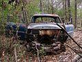 Shelby Farms Park Memphis TN 2013-12-01 004.jpg