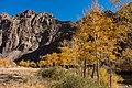 Shijigt canyon 06.jpg