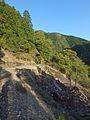 Shimokuwahara, Shimokitayama, Yoshino District, Nara Prefecture 639-3807, Japan - panoramio (1).jpg