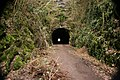 Shute Shelve Tunnel - geograph.org.uk - 1193090.jpg