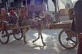 Silk Road (4367816820).jpg