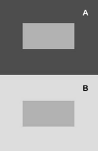 Chubb illusion - Figure 2: Illustration of simultaneous contrast