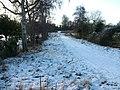 Snowy avenue leading to frozen Meare - geograph.org.uk - 1639734.jpg