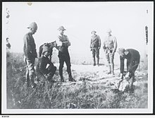 Soldiers wearing slouch hats or sun helmets observing a slaughtered sheep being cut up