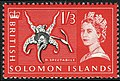 Solomonislands1965orchid1sh3d-sg121.jpg