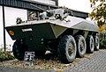 Spaehpanzer Luchs 1.jpg