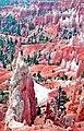Spires, Bryce Canyon UT 9-09 (15130865492).jpg