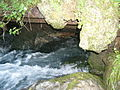 Spring of the River Bosna, Sarajevo (2).JPG