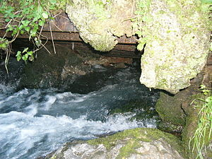 Vrelo Bosne - Spring of the River Bosna under Mount Igman