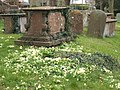 St. Leonard's, B.Blunsdon in Spring - geograph.org.uk - 1346525.jpg
