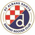 St Albans Saints Dinamo logo.jpg