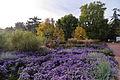 Stadtpark Nürnberg IMGP1844 smial wp.jpg