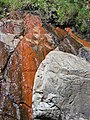 Stained rocks - geograph.org.uk - 517773.jpg