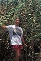 Starr-980706-1526-Arundo donax-habit with Kim-Kahului Beach Rd-Maui (23895295394).jpg