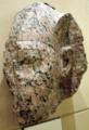 StatueFragment-AmenhotepIII-ROM.png