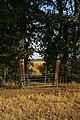 Steeple Footbridge. - geograph.org.uk - 220559.jpg