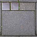 Stolpersteine Köln, Verlegestelle Nußbaumerstraße 11.jpg