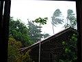 Storming - panoramio.jpg